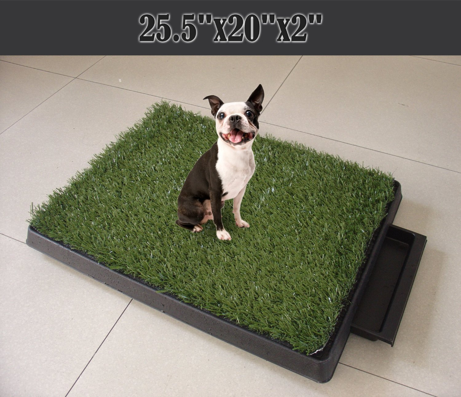 3 Piece Indoor Dog Potty Tray Review